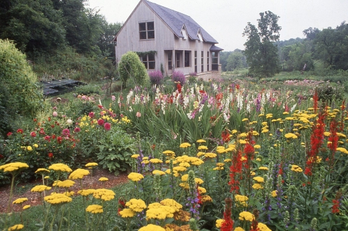 A scene from the flower gardens