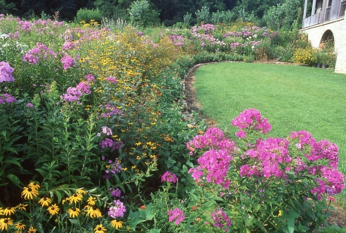 Perennial border in full summer bloom