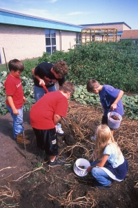 Turkey Valley school garden